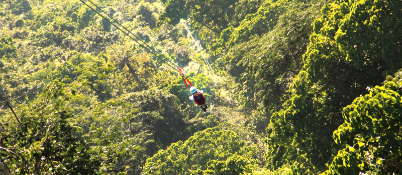Photo courtesy of Vallarta Adventures & Day Excursions at Secrets Vallarta Bay: Extreme Canopy Tours in ...