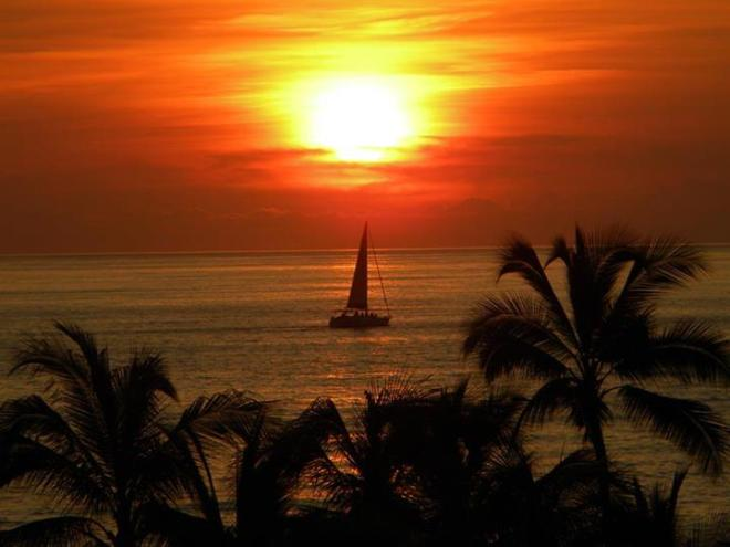 Annette Peterson shared this colorful shot from Secrets Vallarta Bay Puerto Vallarta