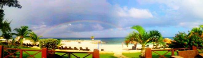 WOW this pic of Secrets Wild Orchid by Jennie K. leaves us speechless!